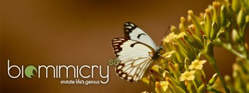 biomimicry-slideshow-001