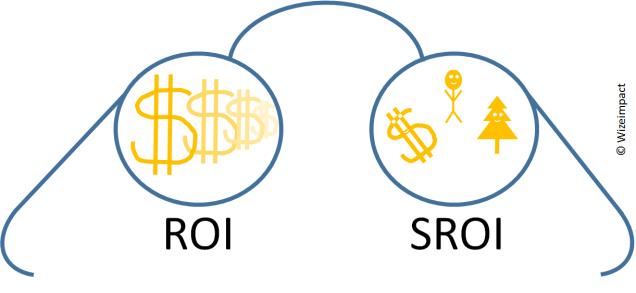 Wizeimpact SROI Icon